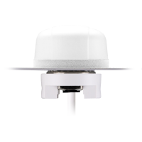 Hercules G21 White 3G/2G Cellular Permanent Mount Antenna, 3M RG-174